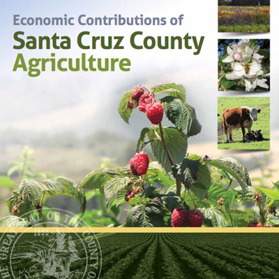 Economic Contributions of Santa Cruz County Agriculture report.