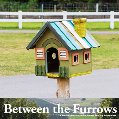 Between the Furrows Newsletter Magazine